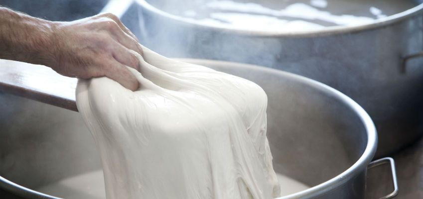 Vernole Tour: Making Mozzarella and Burrata: A workshop on location in the factory